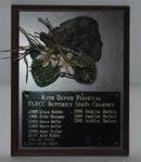 Women's Butterfly - Davock Perpetual Trophy